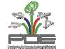 PDE - Programa de Desenvolvimento Espacial